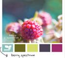 Полезный ресурс: Подбор цветовых схем на design-seeds.com